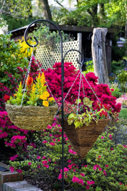 hanging flower basket ideas - Balancing Flower Baskets