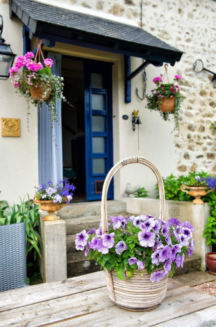 hanging flower basket ideas - Welcoming Blooms
