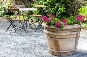 Antique Planter Ideas
