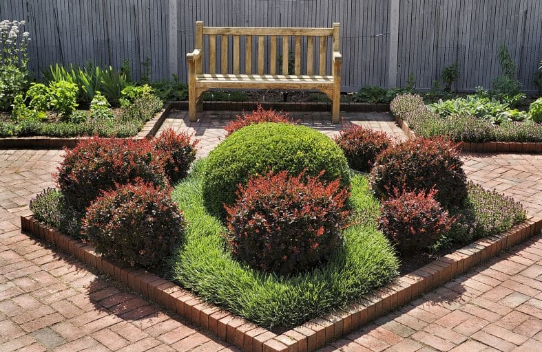 Centrally Placed Well-Cut Bushes